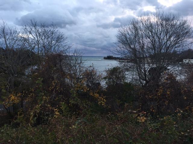 Little Harbor Woods Hole