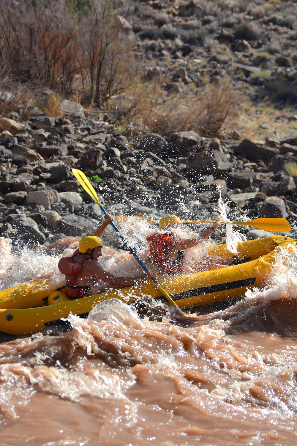 Taking on healthy risk head on in one of the rapids in Cataract Canyon.