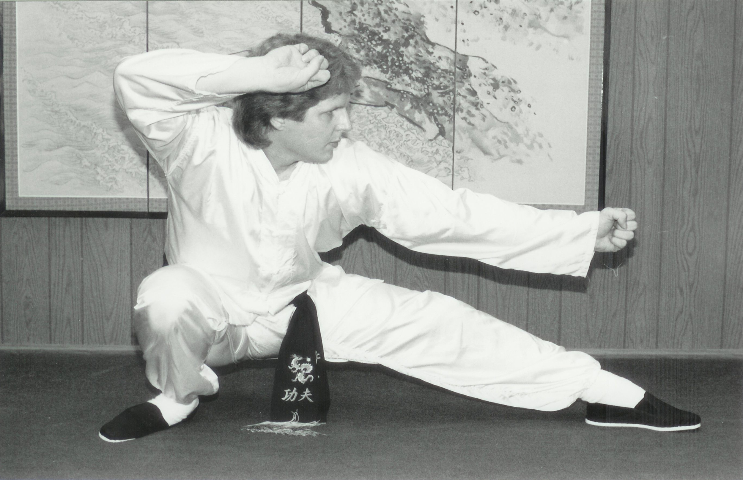Chen Taiji Low Fist