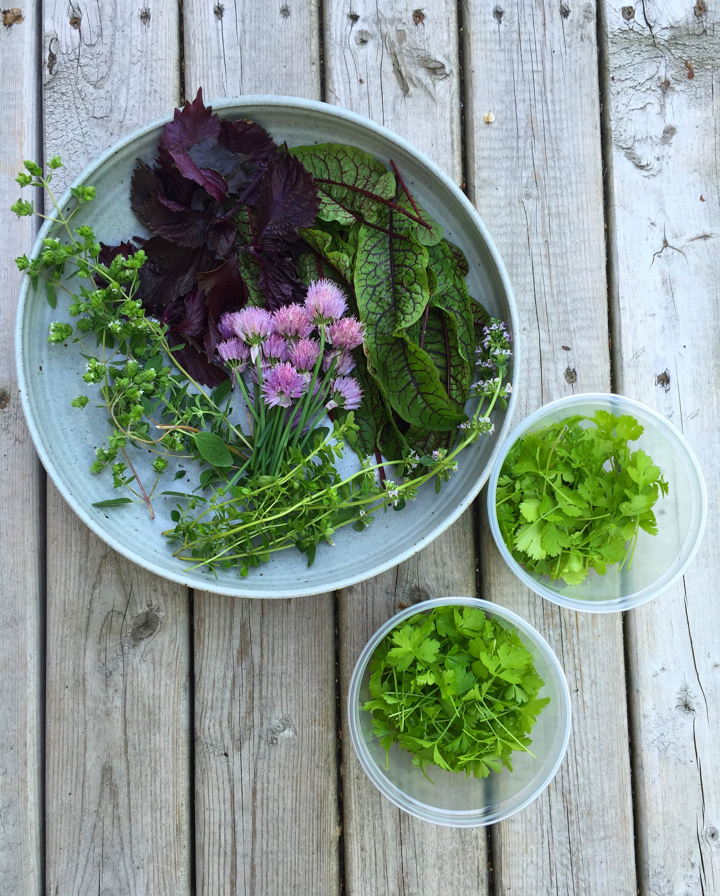Herbs from my garden for garnish