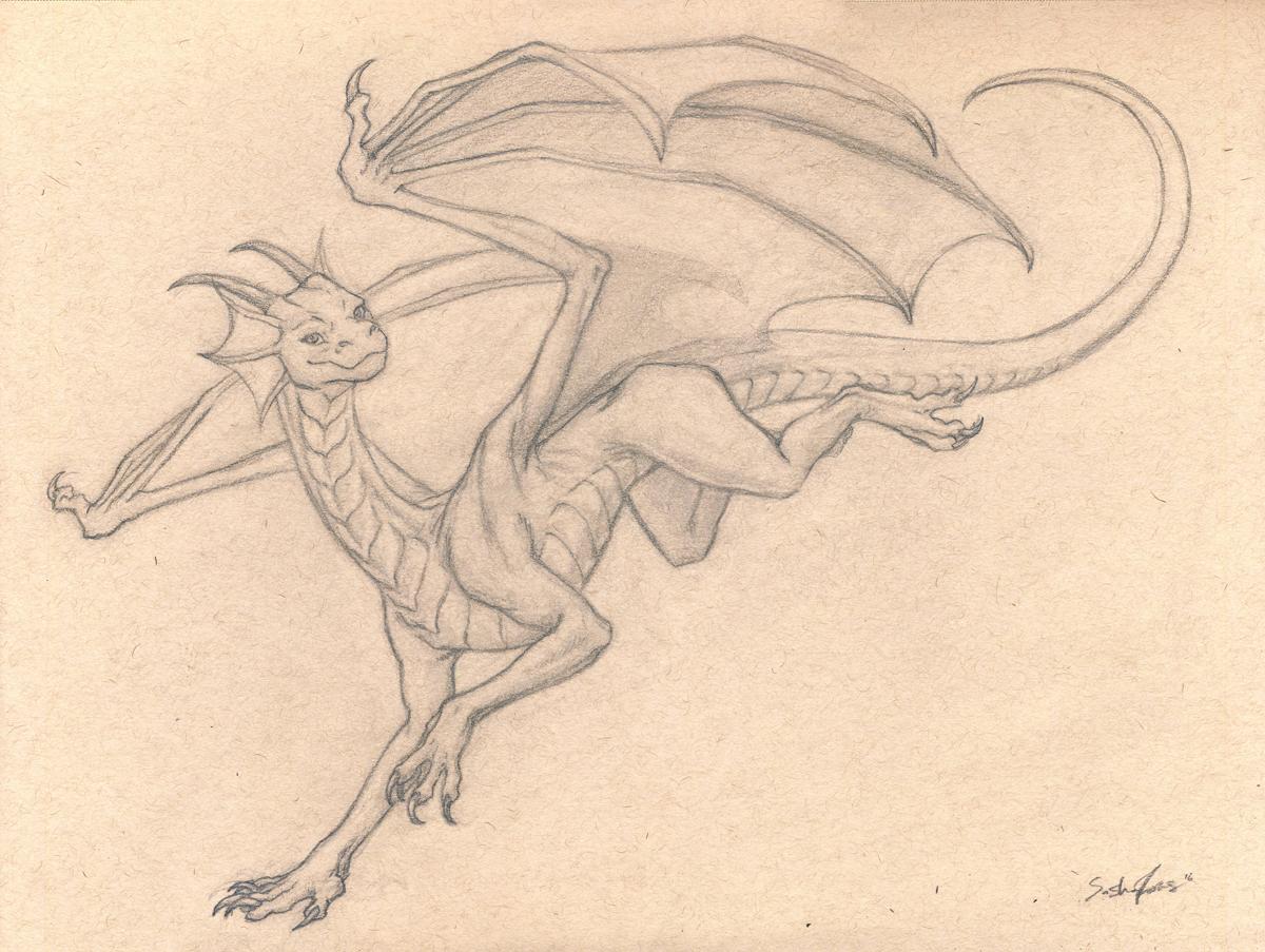 Dragonwise-Drawing.jpg