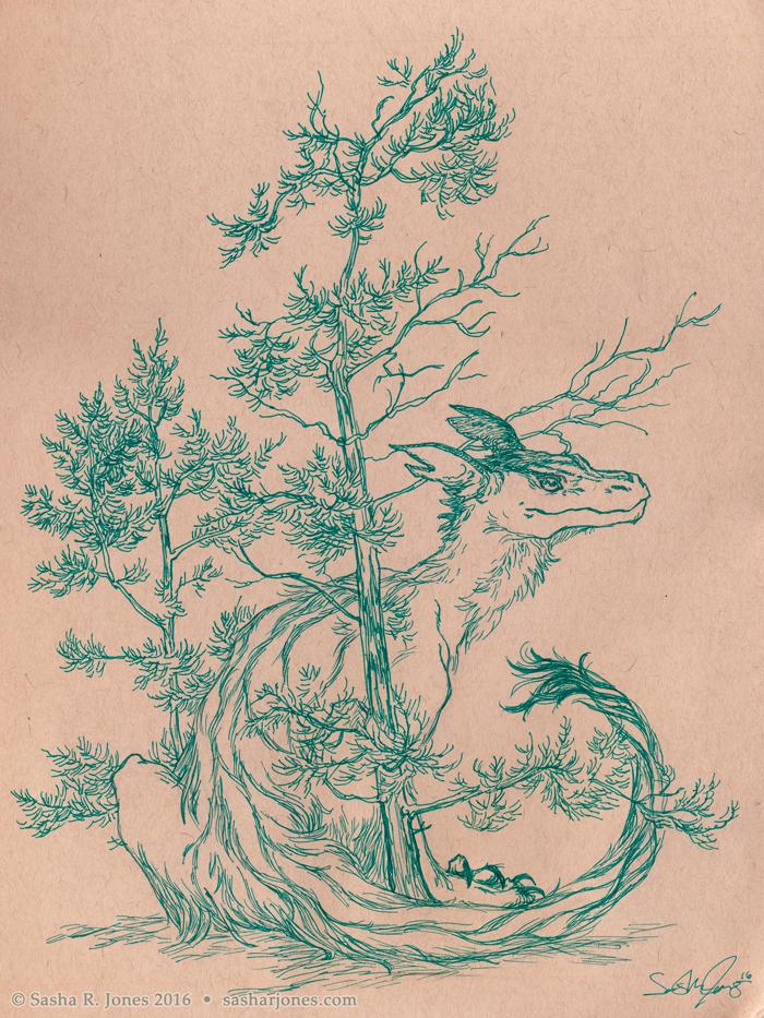 Copy of Sapling