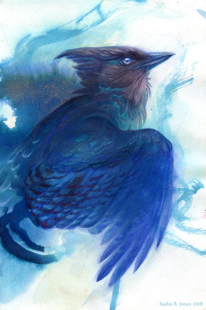 Stellar's Wings