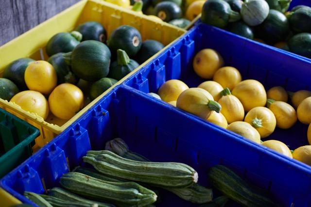 Squash and Zucchini at the Union Square Farmer's Market.