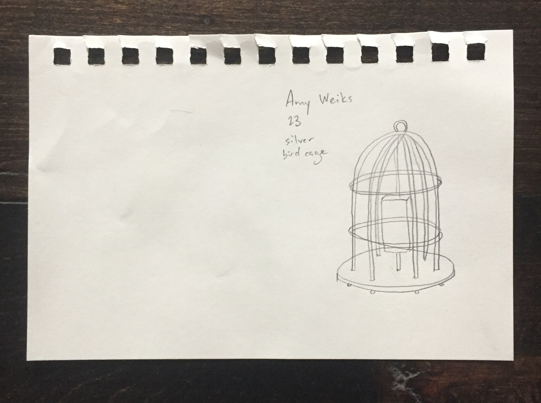Amy's First Make: A birdcage, Age 23.
