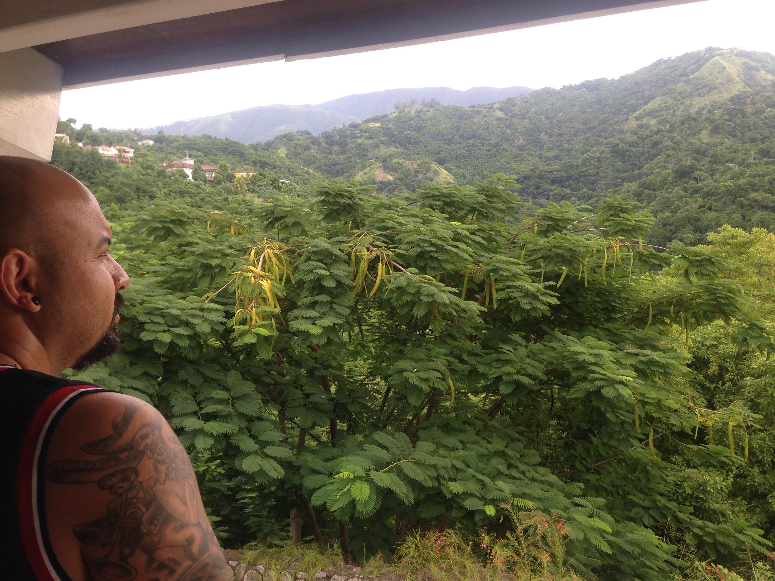 Kingston, Jamaica. The Blue Mountains