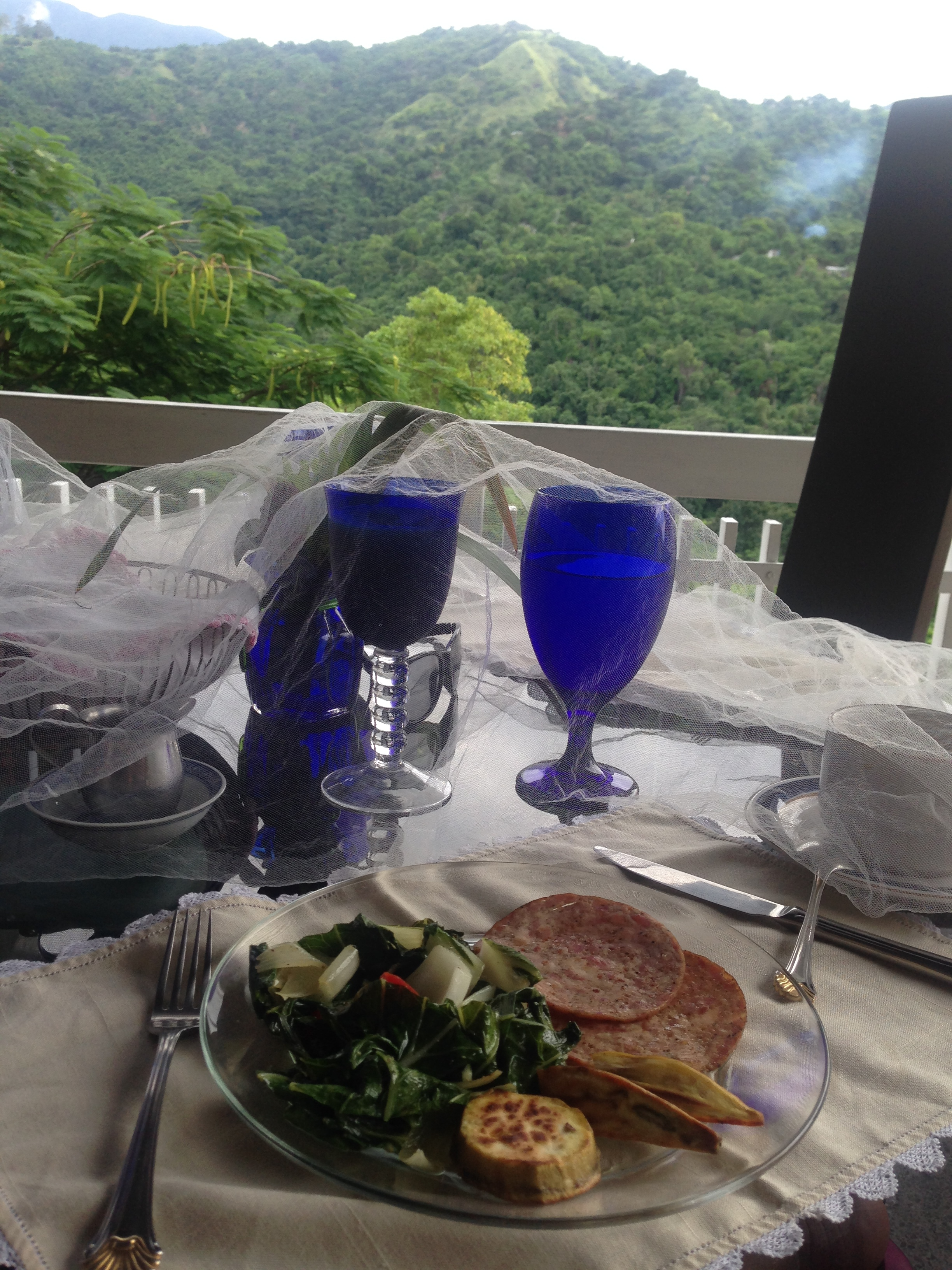 Greens, sausage and plantains cooked for us at the B&B Neitas nest. Kingston, Jamaica
