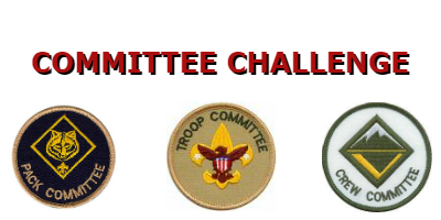 Committee Challenge.jpg