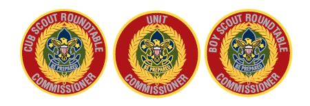 Commissioner Patches.JPG