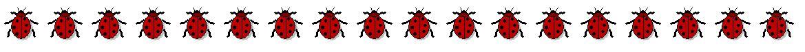 Flyer_bugs.JPG