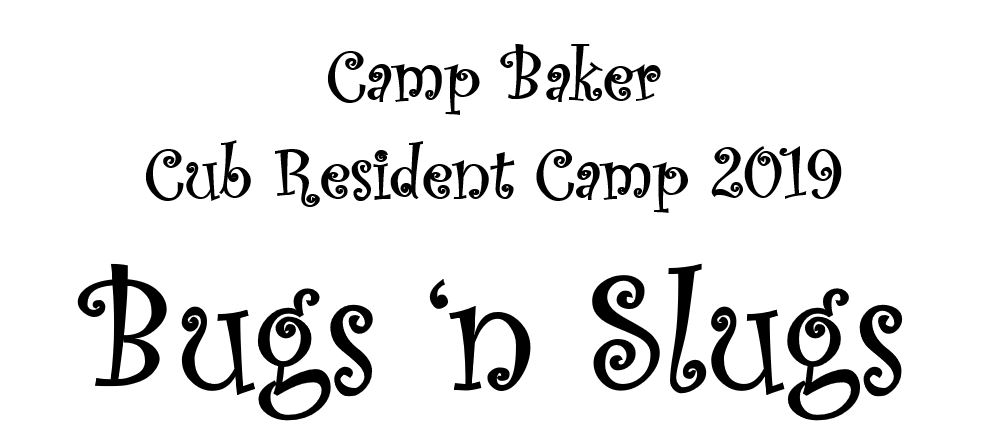 Cub Summer Camp — Oregon Trail Council, BSA
