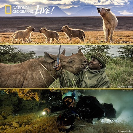 We are super excited about the National Geographic Live events happening at the Hult Center!! Use code OTCBSA and our council receives a portion of the ticket price! Go watch some amazing speakers and support Scouting!! Winner winner 😁👏👏🥰 The events are: Social by Nature with Ronan Donovan 11/24/2019 2:00 PM Extreme Cave Diving with Kenny Broad 1/29/2020 7:30 PM Rhinos, Rickshaws, and Revolutions with Ami Vitale 3/1/2020 2:00 PM Link here for the first event: https://www.hultcenter.org/directory/Social-by-Nature.htm?categories=-10,49488,104394&keywords=&h=False&pg=2&pagesize=10  #nationalgeographic #hultcenterfortheperformingarts #supportscouts