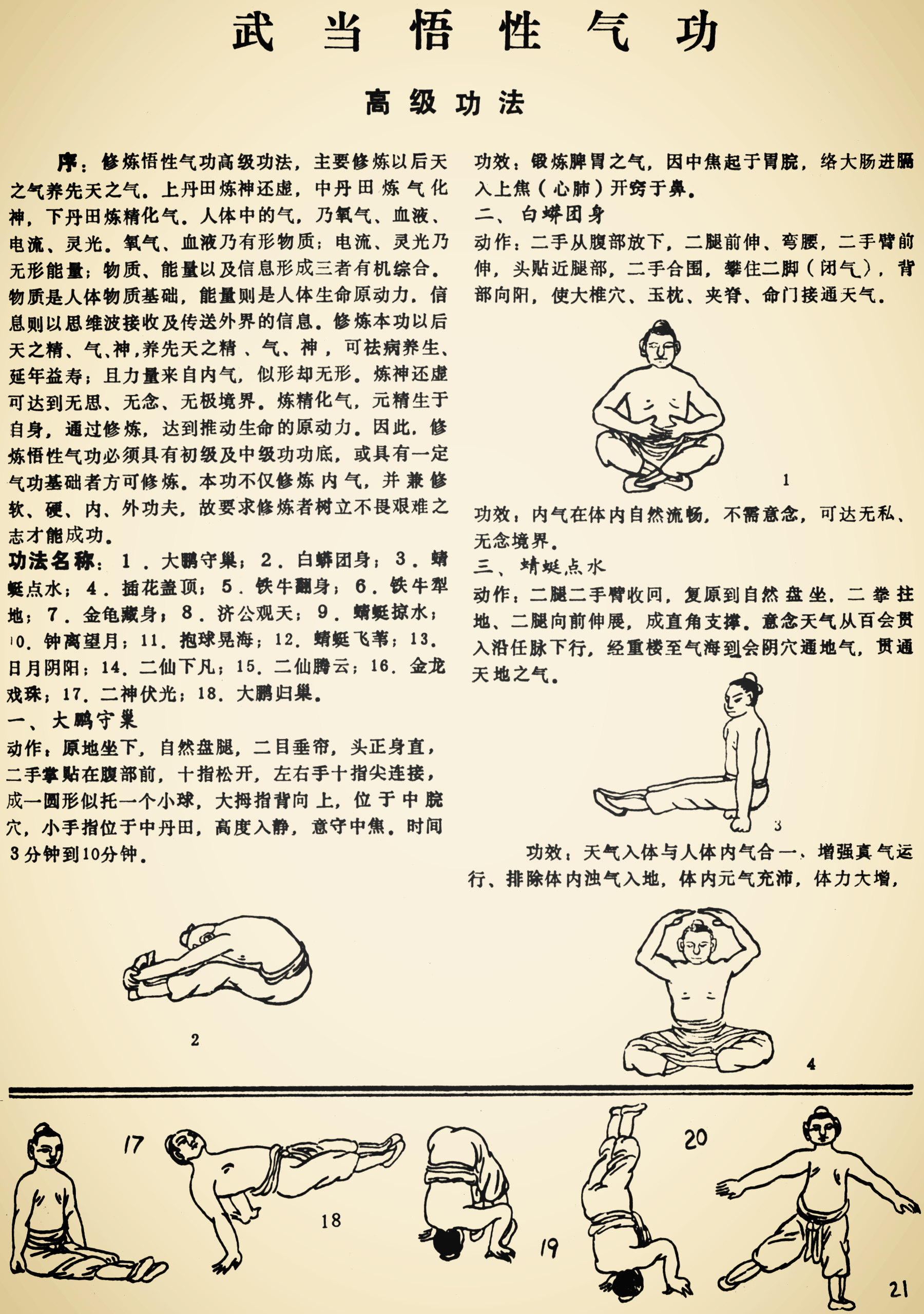 Instructions on the Wudang Wuxing Qigong by Lu guo Zhu