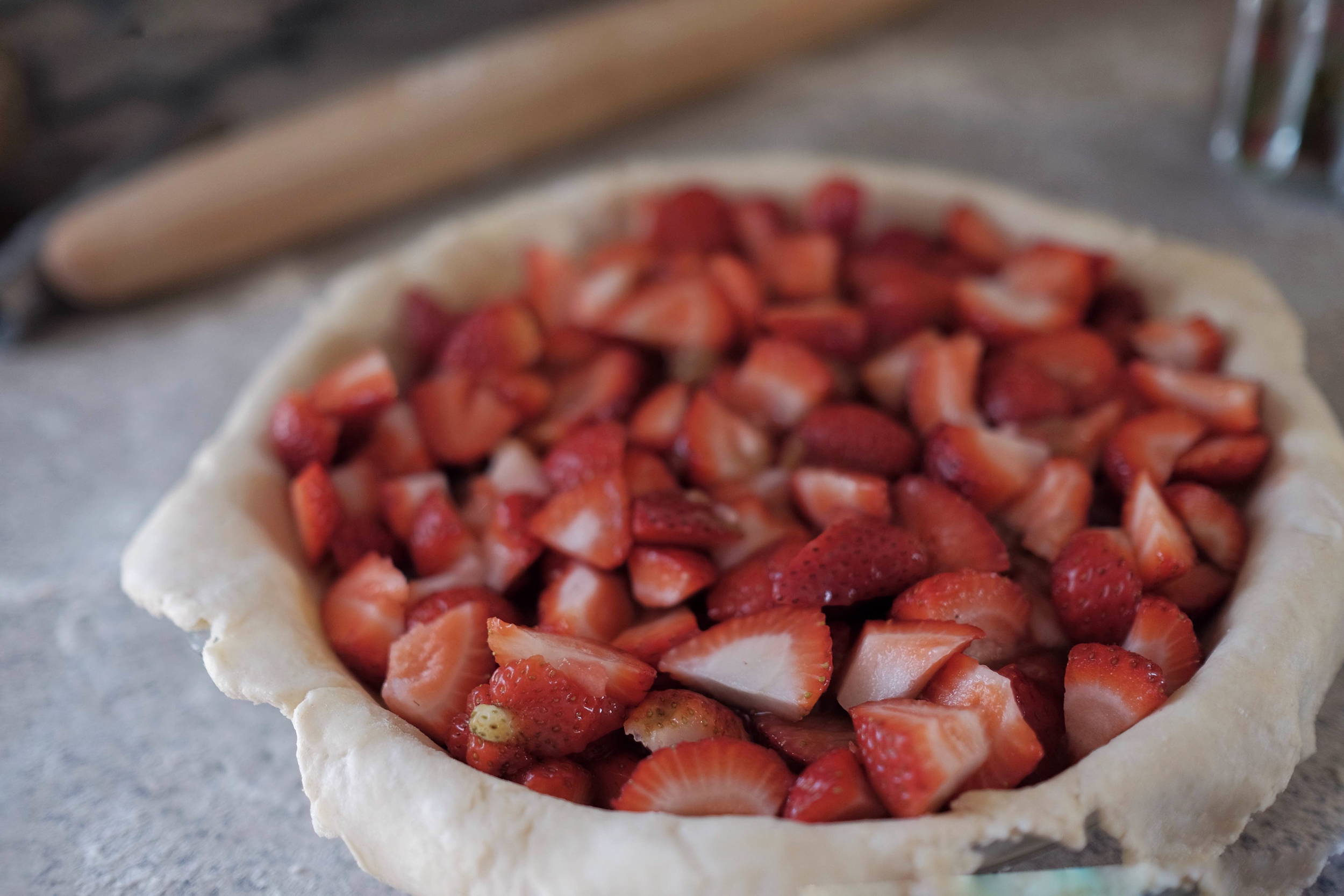 Rhubarb_6.jpg