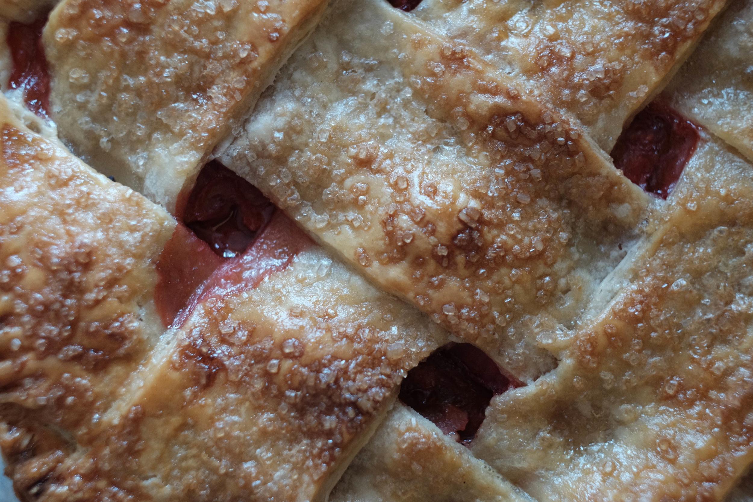 Rhubarb Pie_1.jpg