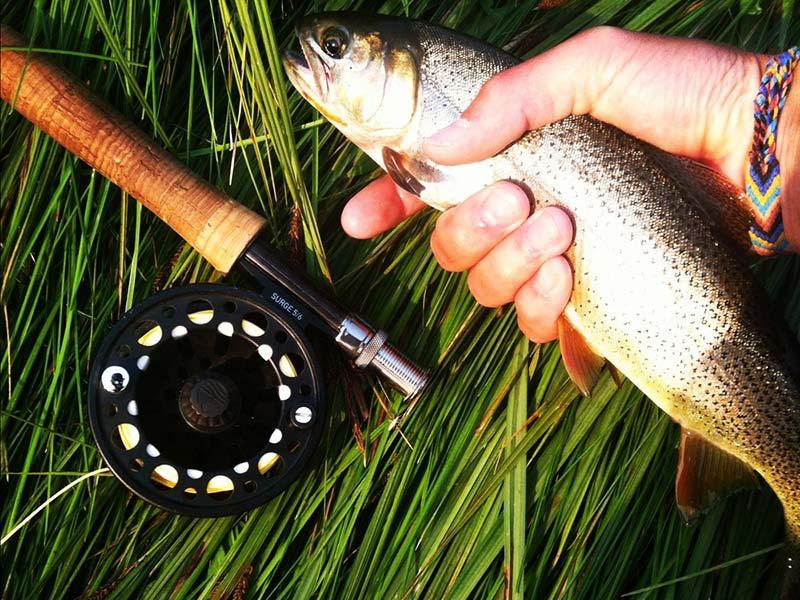 Jackson Hole Guided Fly Fishing
