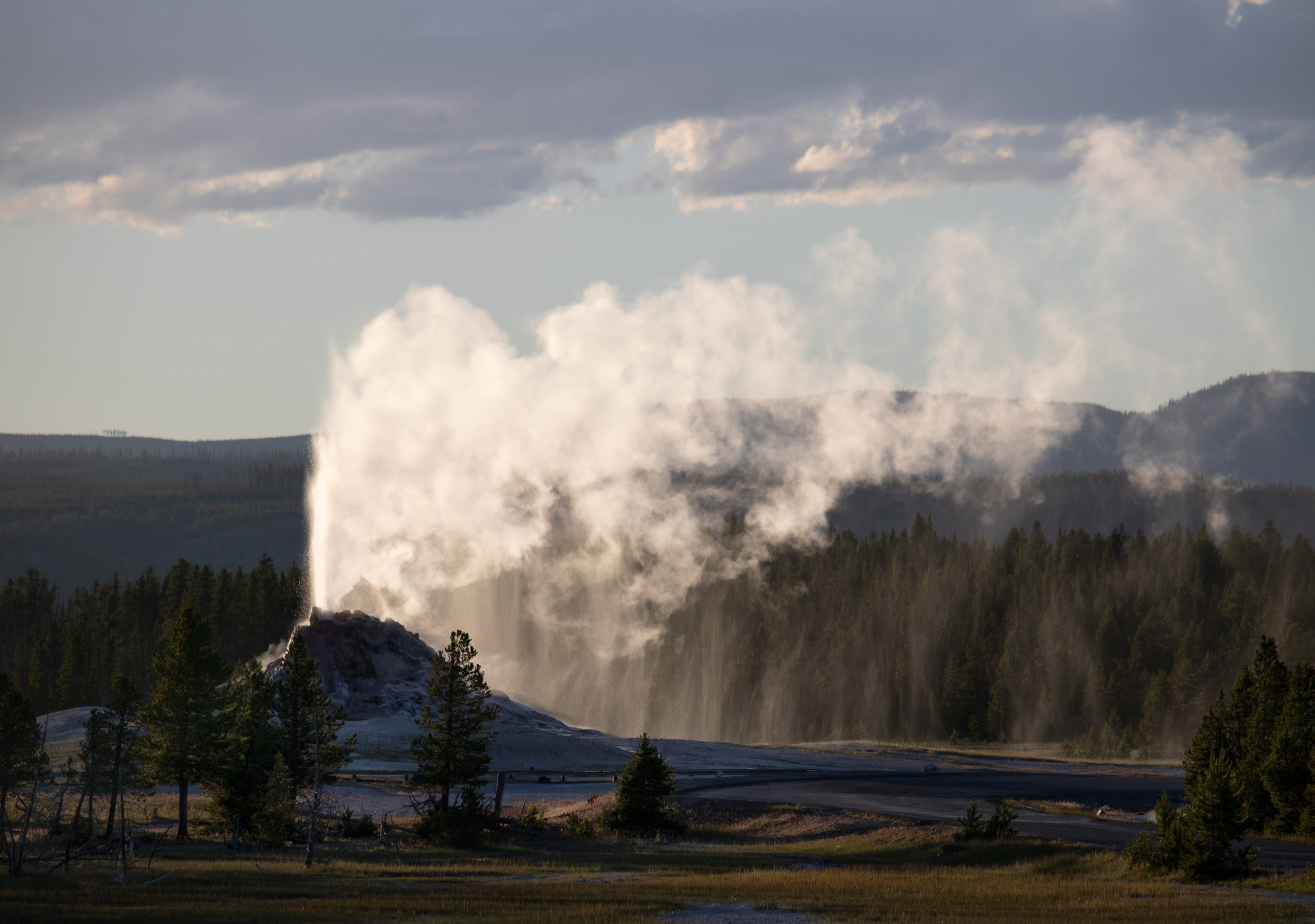 Steamboat Geyser blowing steam - Yellowstone Guided Tours - Wyoming Guide Co