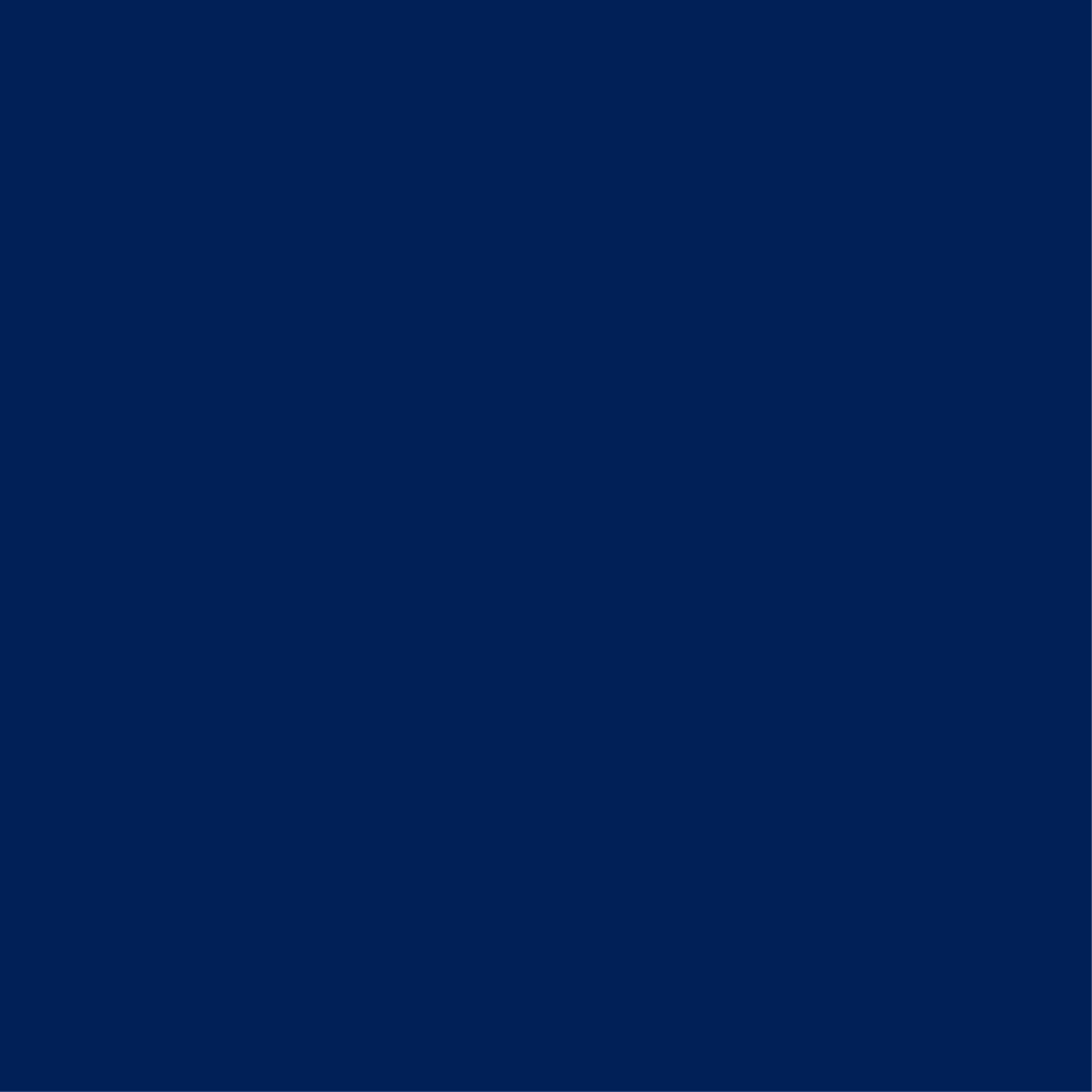 22. Navy Blue
