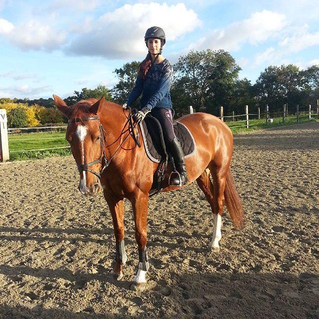 #harasdelukos #horses #ridinghorses #dressage #equitation #equestrian #cavalier #chevaux #insta #tazdelukos #belfort