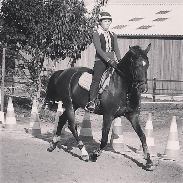 #harasdelukos #horse #dressage #equitation #equestrian #ribayazdelukos #cavalier #cheval #elevage #insta