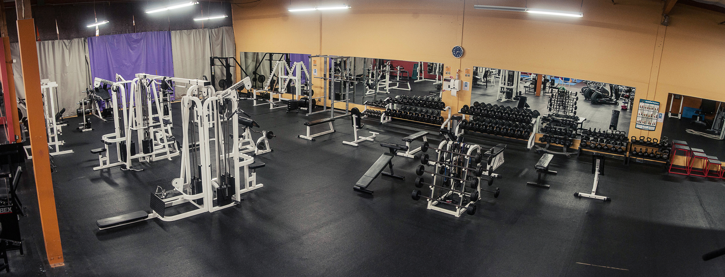 Free Weight Area - Multi-Station Cable MachineAssisted & Unassisted Squat BarsAssisted & Unassisted Bench PressPrecor Functional TrainerDumbbells & BarbellsKettlebellsJump BoxesBattle RopesBosu Balls