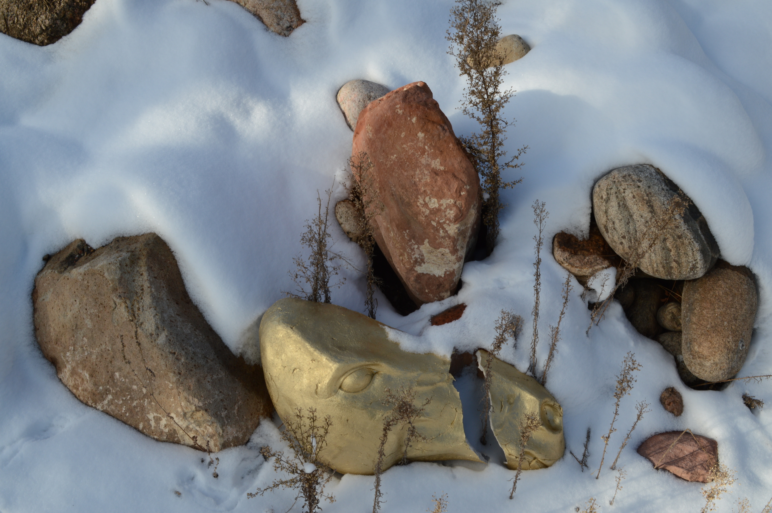 """Gold Horse Head,Snow. L 23"""" Unfired Clay, Paint;Colorado."""