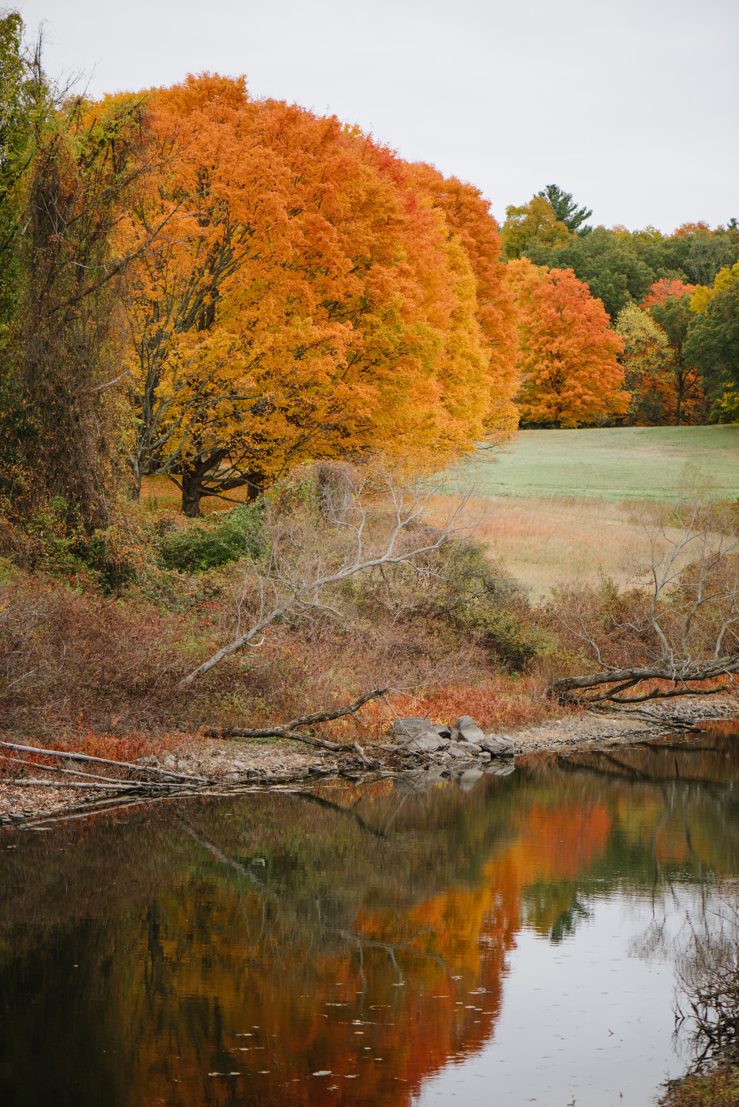 Autumn-2015-35.jpg