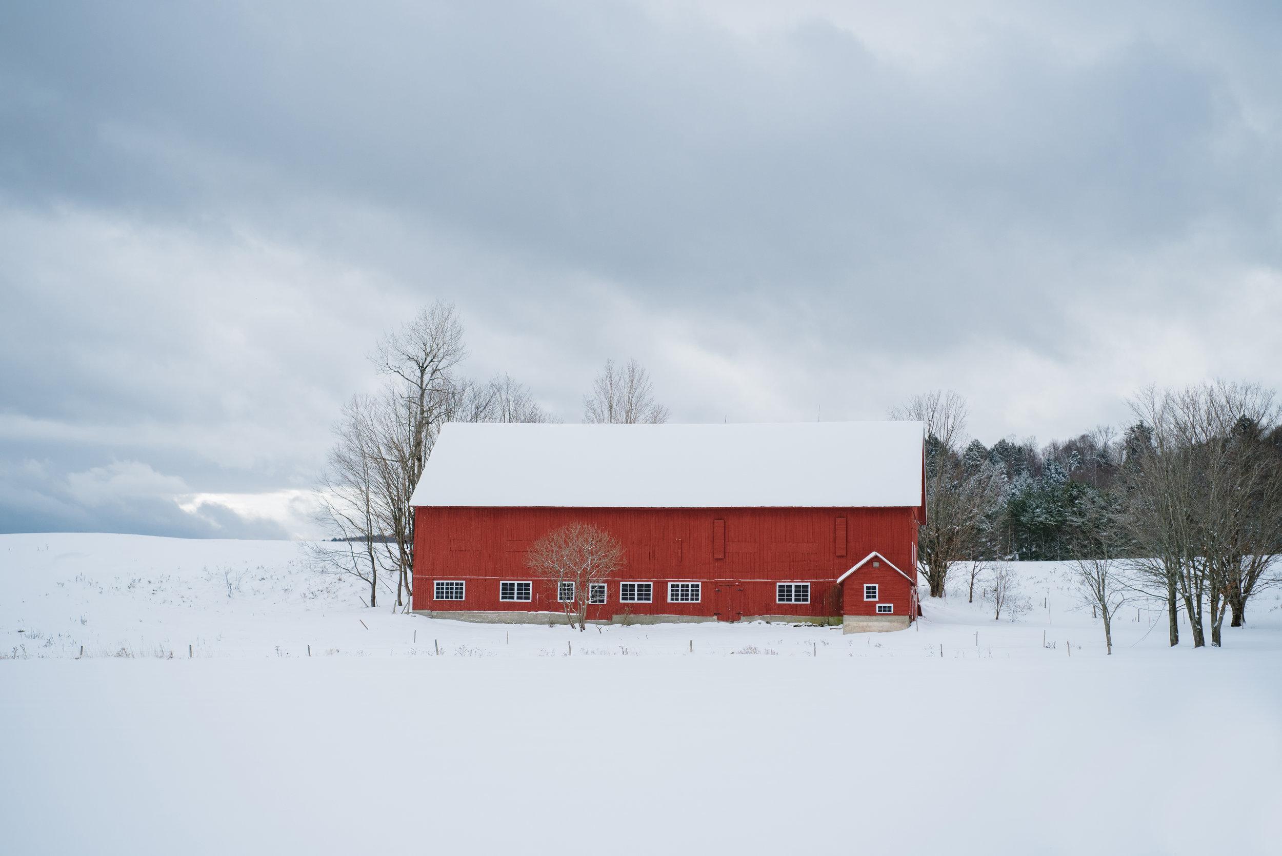 Winter-RoadTrip-2.jpg