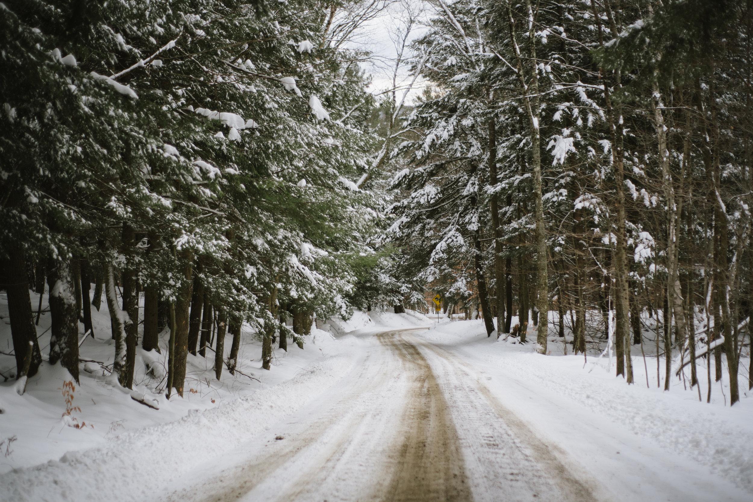 Winter-RoadTrip-12.jpg