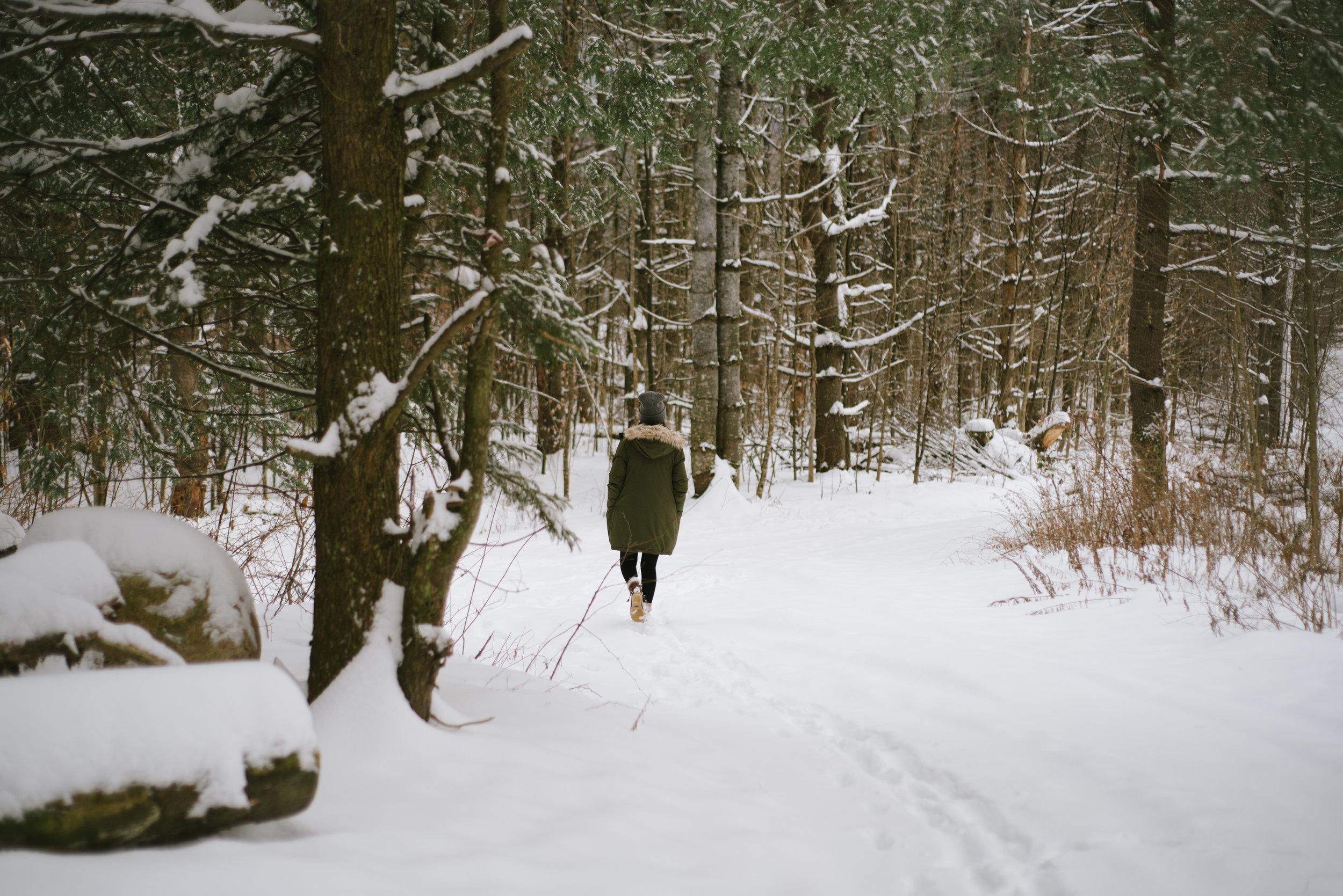 Winter-RoadTrip-14.jpg