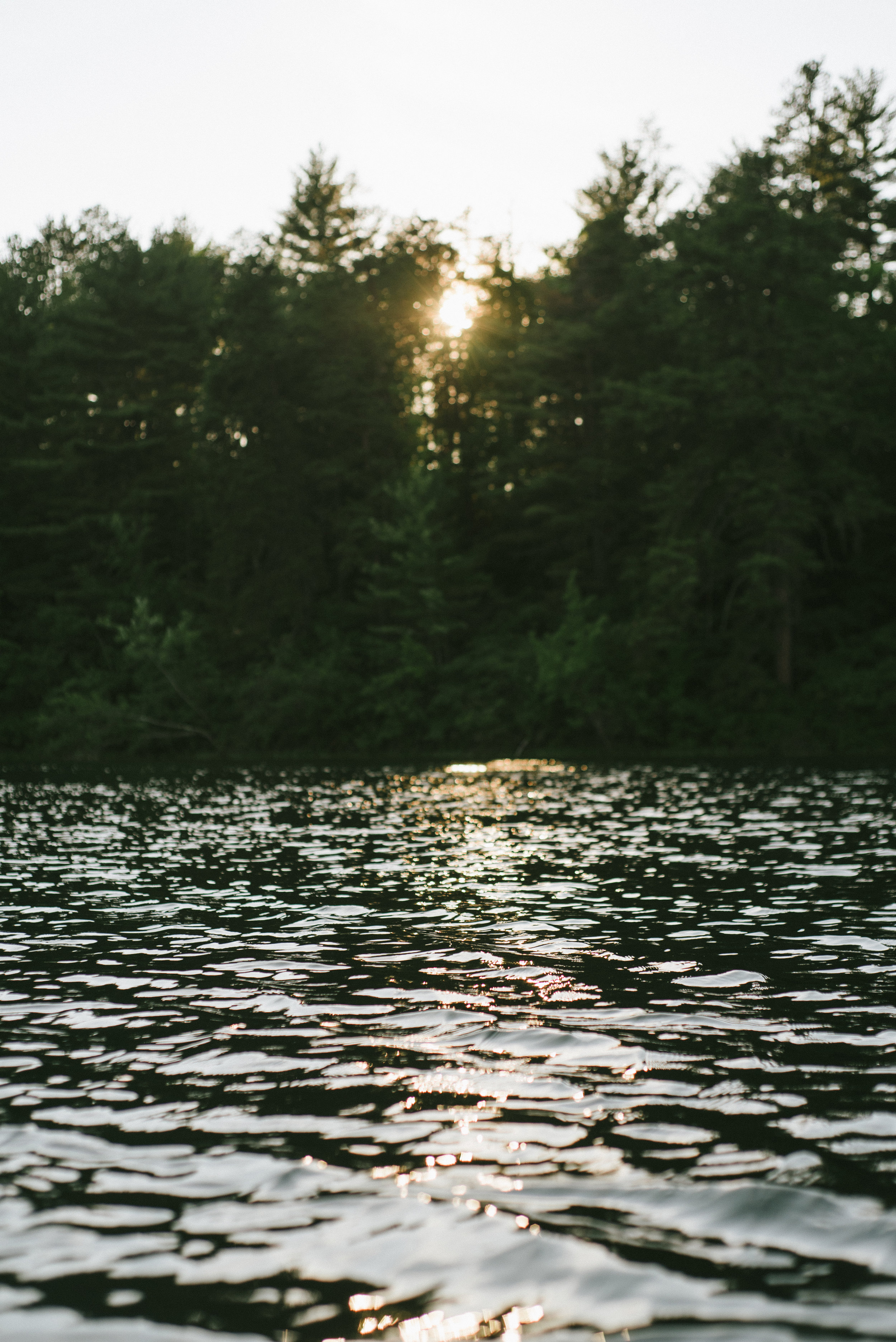 BrokenPaddle-Summer16-3.jpg