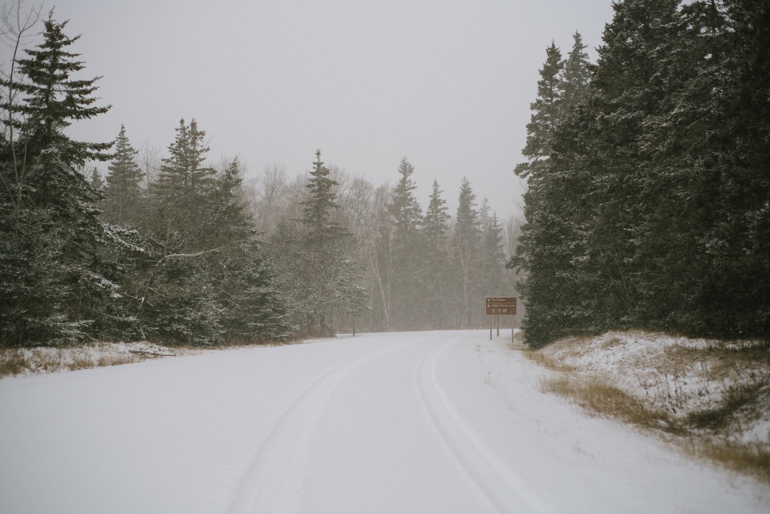 Acadia-14.jpg