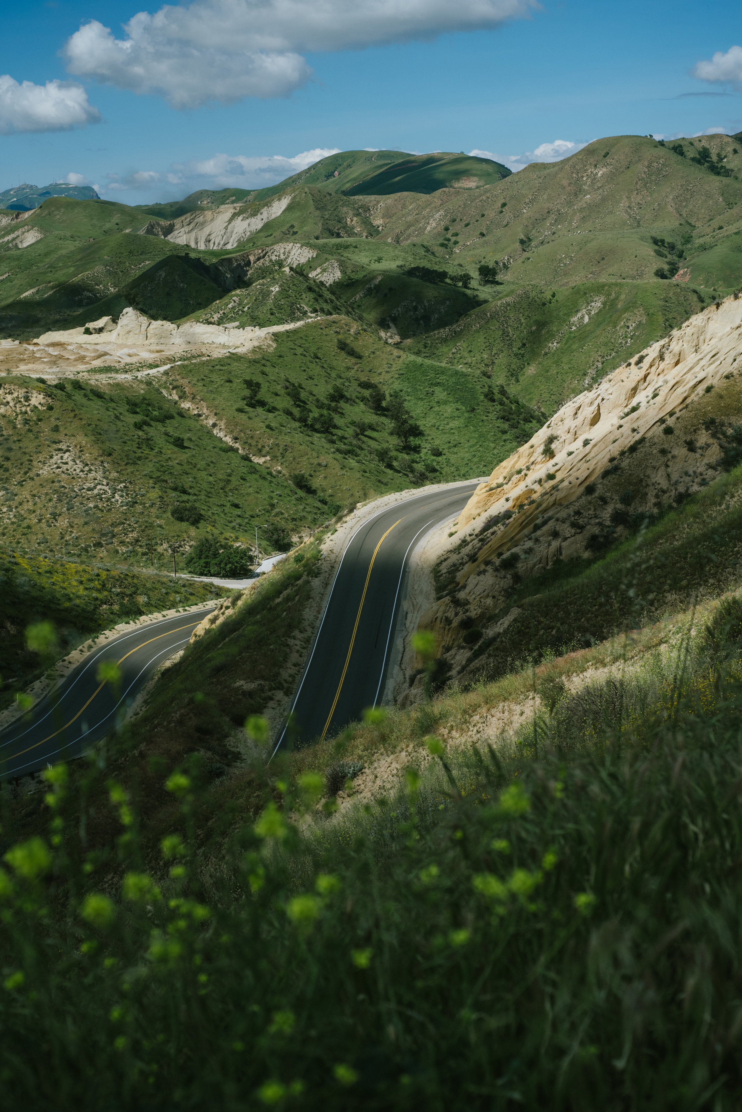 California-Spring17-3.jpg