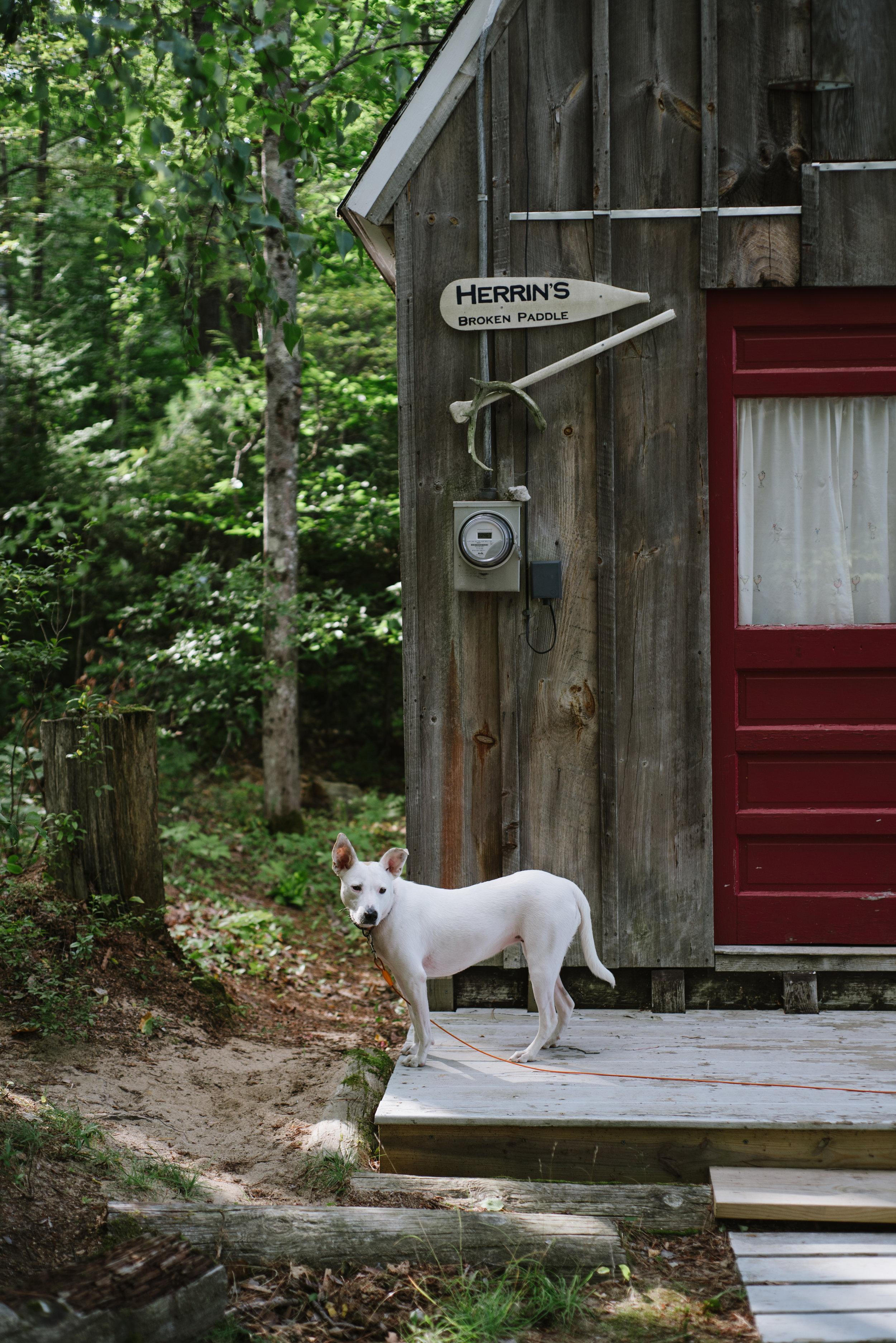 Camp-09.01.17-10.jpg