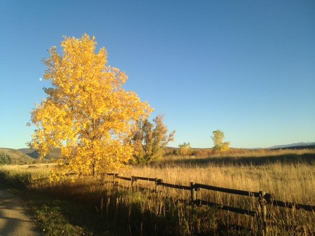 Near the ranch...