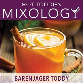 Mixology-HotToddies-BarenjagerToddy.jpg