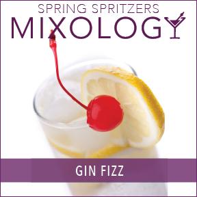 SpringSpritzers-Mixology-Gin Fizz.jpg