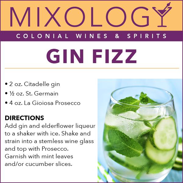 GinFizz-Mixology-web.jpg