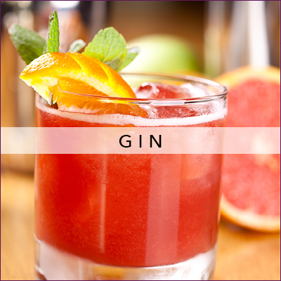 Mixology-Category-400x400-gin.jpg
