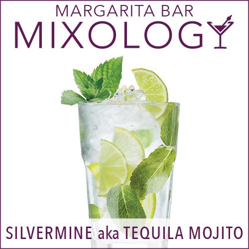 Mixology-MargaritaBar-Silvermine.jpg