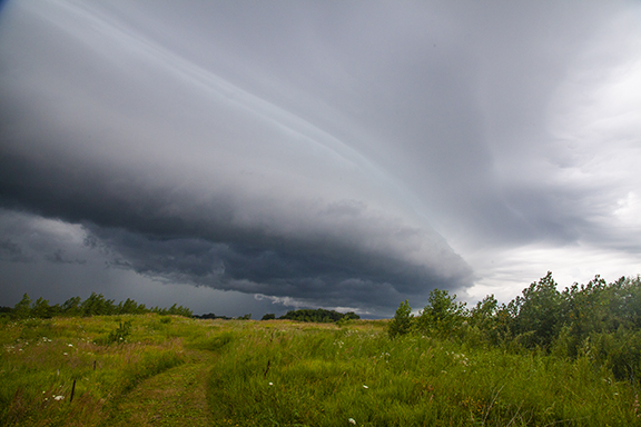 Shelf Cloud Blow Through Cedar FAlls, Iowa, Photo by Craig Johnson, Copyright 2019