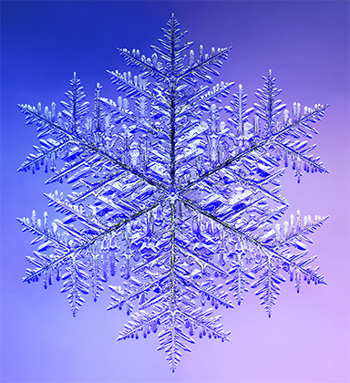 Click this image to learn about snow at http://snowcrystals.com/