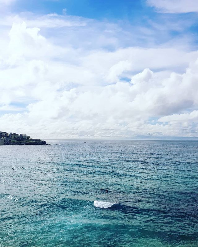 Welcome to Bondi 🤙🙏🌴