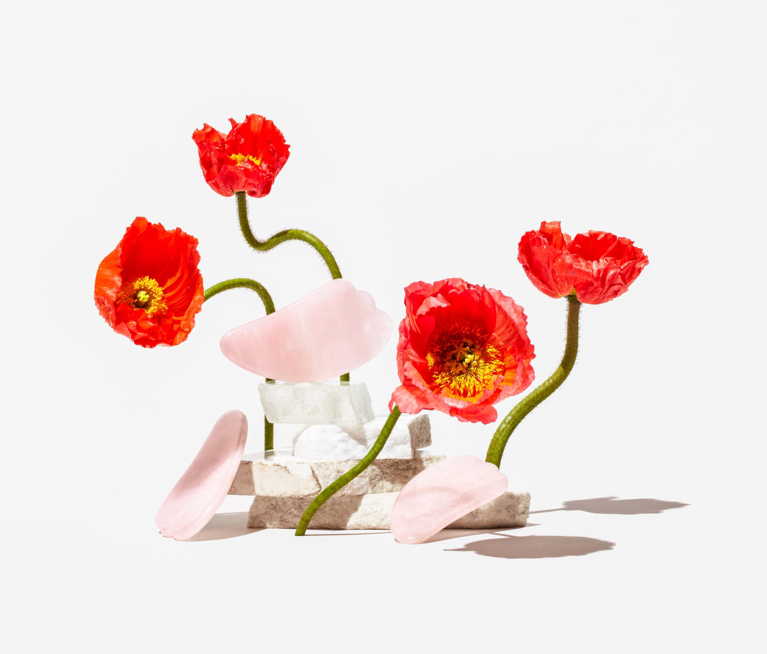 Herbivore_SS_Rose_Quartz_Gua_Sha_027_Crop.jpg