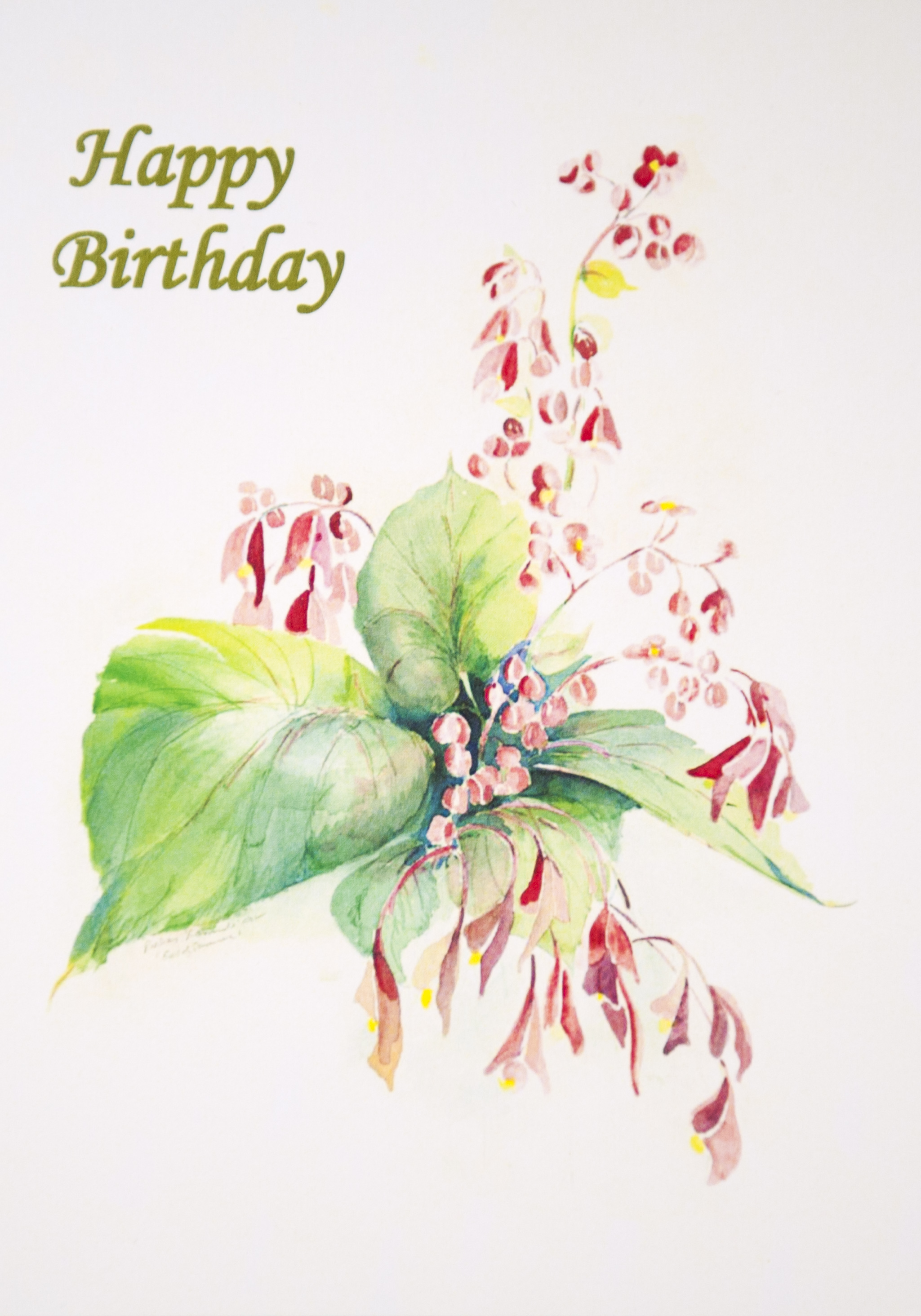 """HAPPY BIRTHDAY   Suggested donation: $10.00 Size: 5 x 7   This Mass card celebrates a birthday. Cover features """"End of Summer."""""""