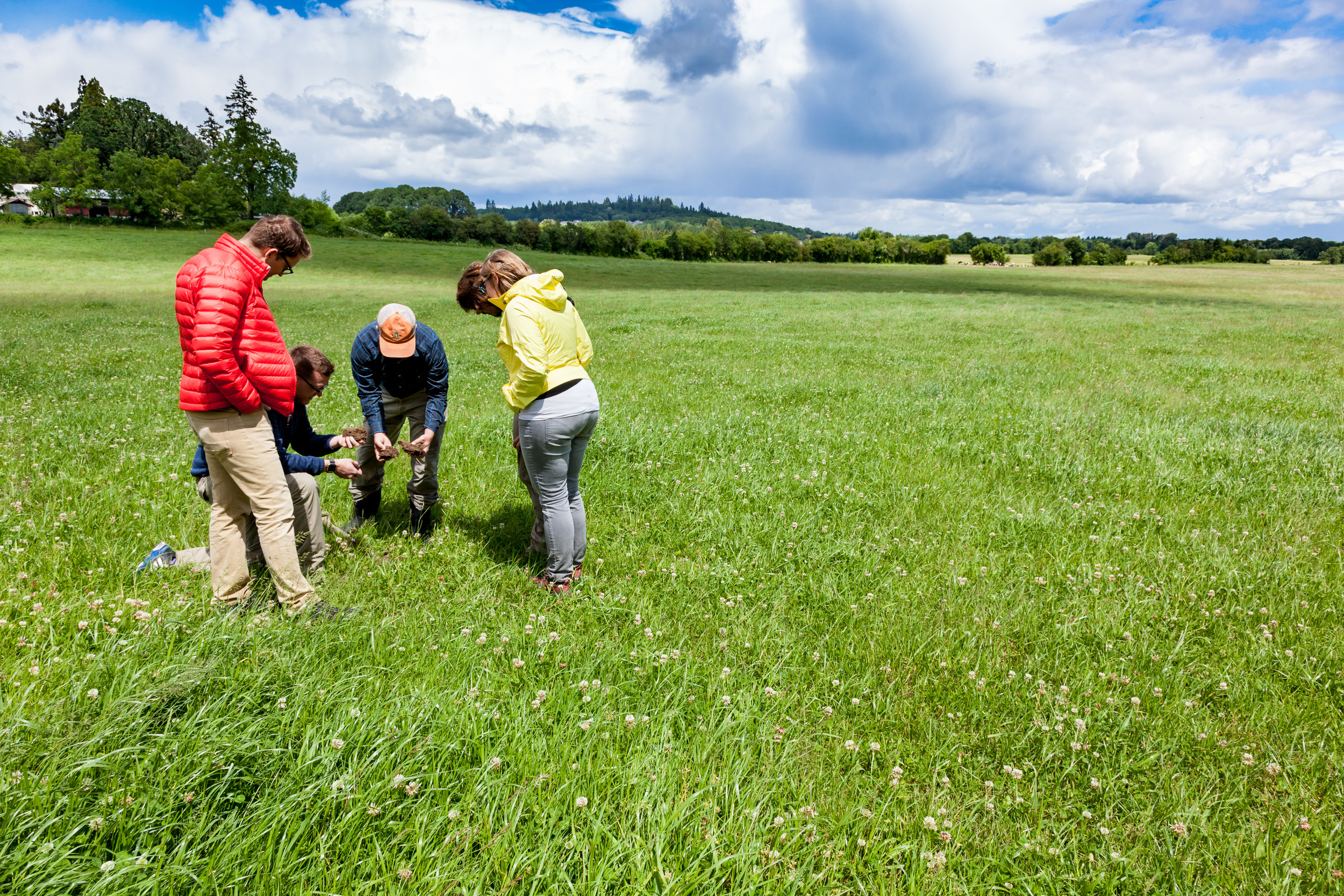 """Introducing diverse pastures into crop rotations can improve soil quality and fertility. Our team and partners examine the soil in a converted pasture in Oregon that has now been sustainably managed for several years.     Normal   0           false   false   false     EN-US   X-NONE   X-NONE                                                                                                                                                                                                                                                                                                                                                                                                                                                                                                                                                                                                                                                                                                                                                                                                                                                        /* Style Definitions */  table.MsoNormalTable {mso-style-name:""""Table Normal""""; mso-tstyle-rowband-size:0; mso-tstyle-colband-size:0; mso-style-noshow:yes; mso-style-priority:99; mso-style-parent:""""""""; mso-padding-alt:0in 5.4pt 0in 5.4pt; mso-para-margin-top:0in; mso-para-margin-right:0in; mso-para-margin-bottom:8.0pt; mso-para-margin-left:0in; line-height:107%; mso-pagination:widow-orphan; font-size:11.0pt; font-family:""""Calibri"""",sans-serif; mso-ascii-font-family:Calibri; mso-ascii-theme-font:minor-latin; mso-hansi-font-family:Calibri; mso-hansi-theme-font:minor-latin;}"""