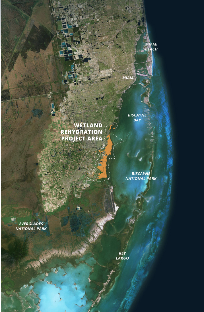Wetland Rehydration Project Area   Copyright Earth Economics 2019