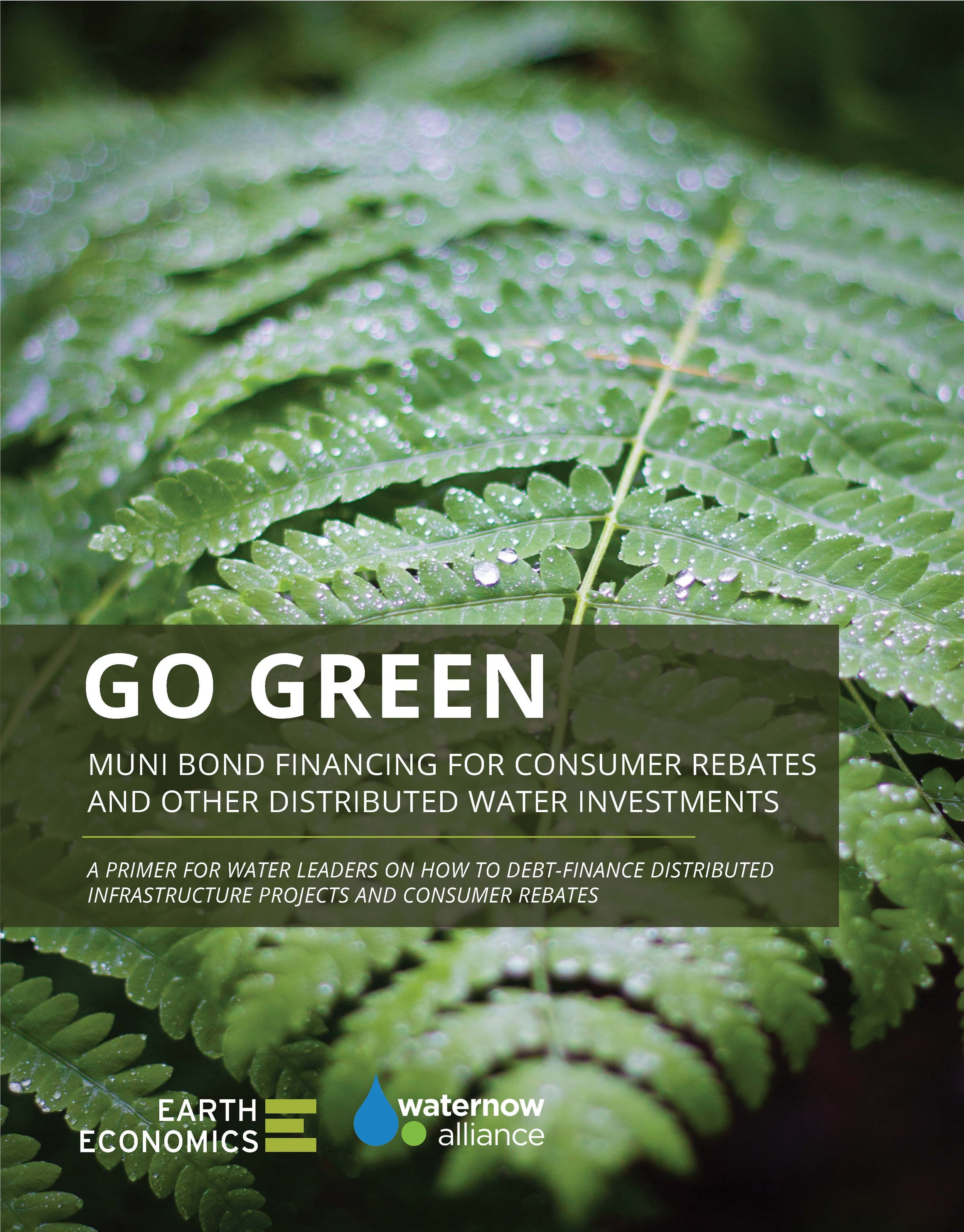 Pages from GoGreen_EarthEconomics_1018-3.jpg