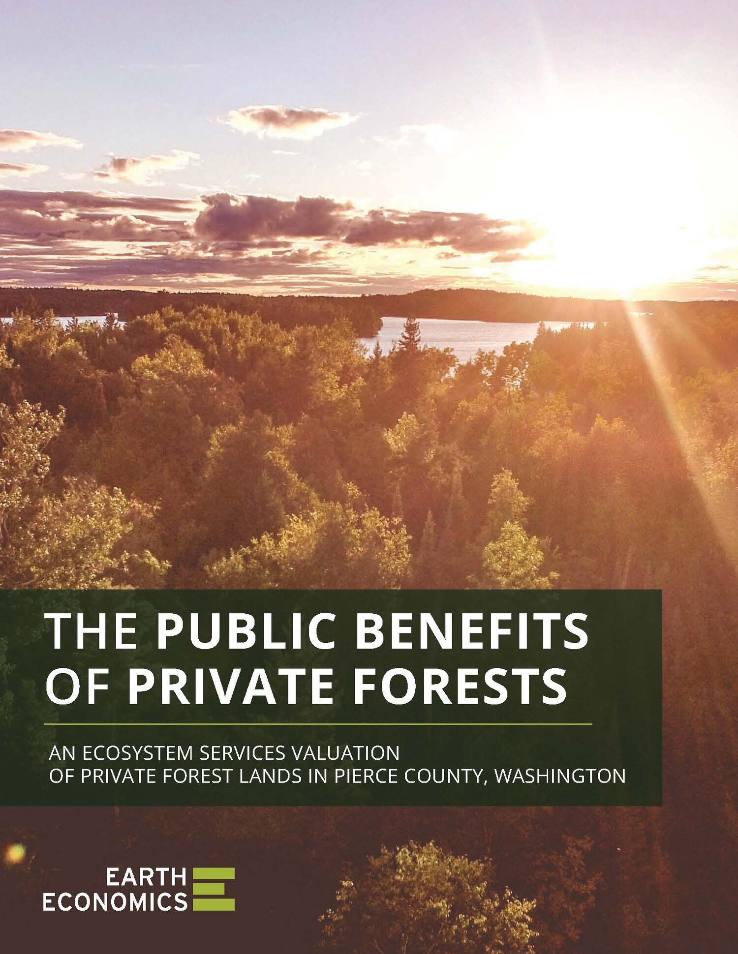 Pages from PublicBenefitsPrivateForests_EarthEconomics_0118-2.jpg