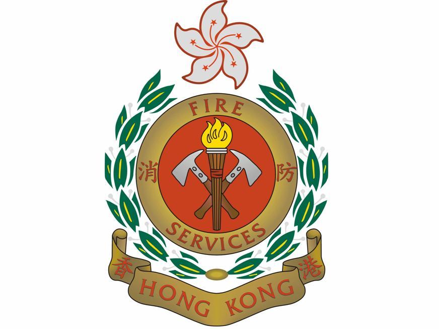 FSD_Logo_Web.JPG
